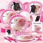 swine party pack