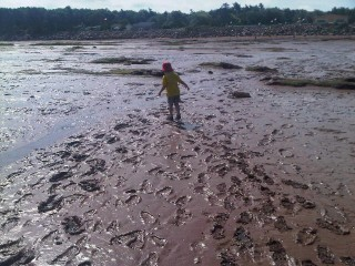 Max, playing in Mud Flats