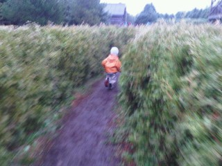 @coffeewithjulie Running in Mazes at Saunders Farm