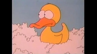 Duck from video Where Do I Come From?