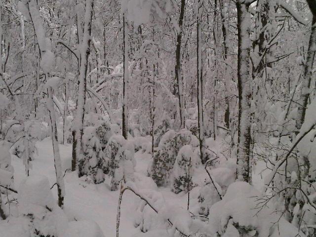 Fluffy snow!