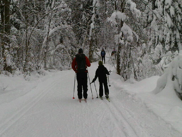 Skiiing in Gatineau Park