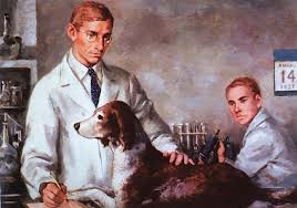 Fredrick Banting working with a dog in his lab.