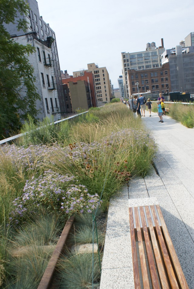 Chelsea Highline park in NYC.
