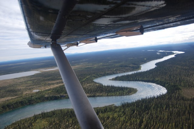 Aerial view of Great Bear River from the float plane. (Photo credit: Courtney Terriah)