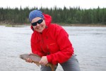 Greyling fish, Great Bear River, NWT