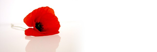 remembrance_day_2013-600x200