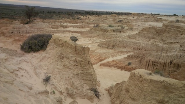 A sample of some of the interesting sand formations along the drive tour.