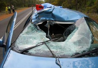 The wreckage of the fatal car crash after a kangaroo smashed through the windscreen. Photo: AAP