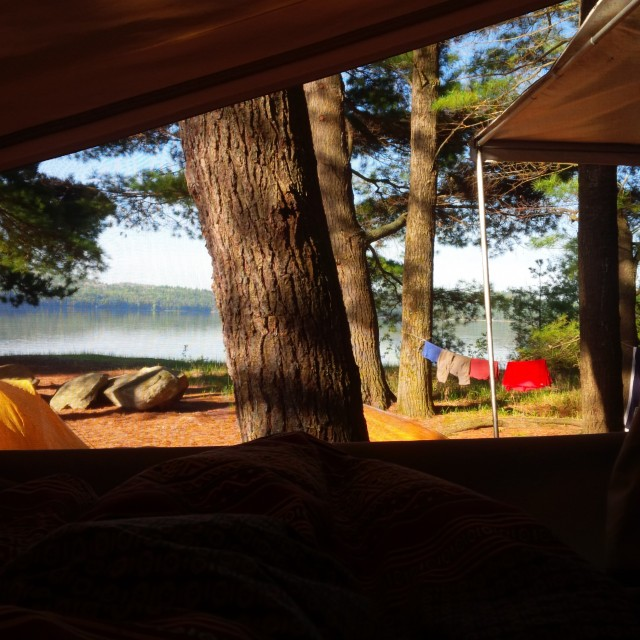 The view from our trailer (site 8) for morning coffee in bed.