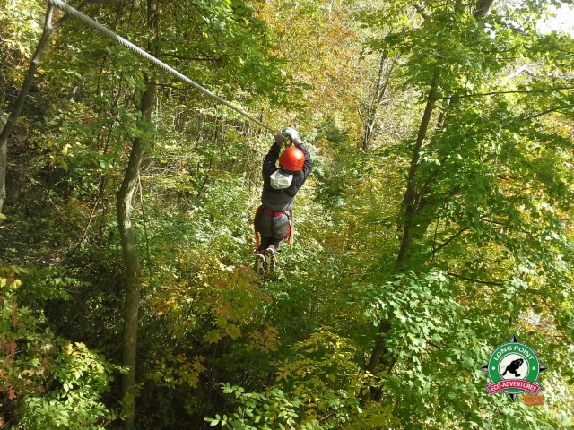 Stella in action on the Long Point Eco-Adventures zip track!